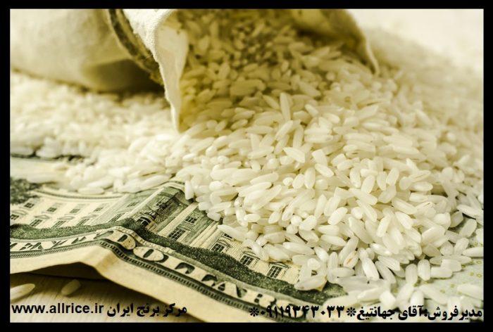 خرید برنج شمال