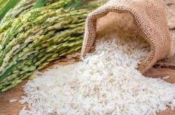 خرید برنج سنگ طارم