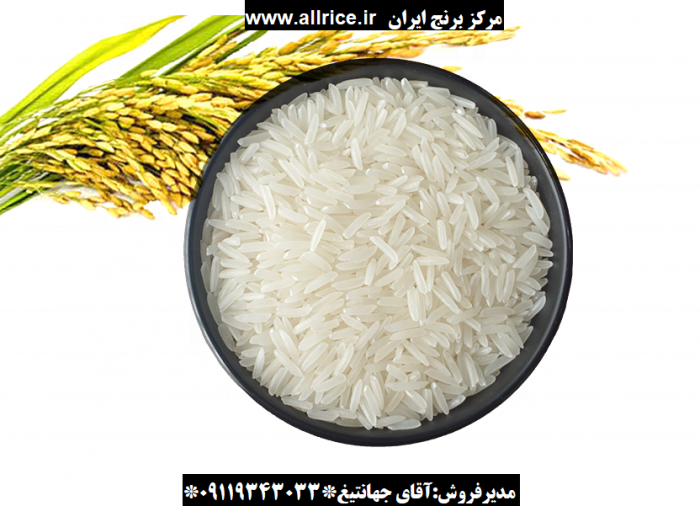 فروش برنج شیرودی