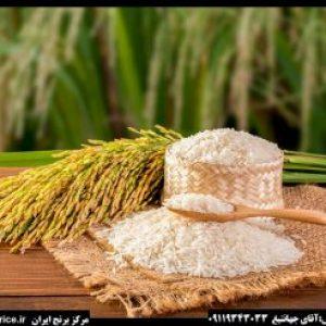 قیمت برنج هاشمی درجه یک