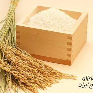 قیمت سبوس برنج قهوه ای اصل