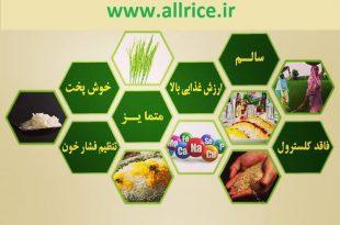 مرکز برنج ایرانی کجاست