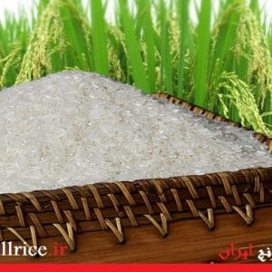 خرید برنج گلستان