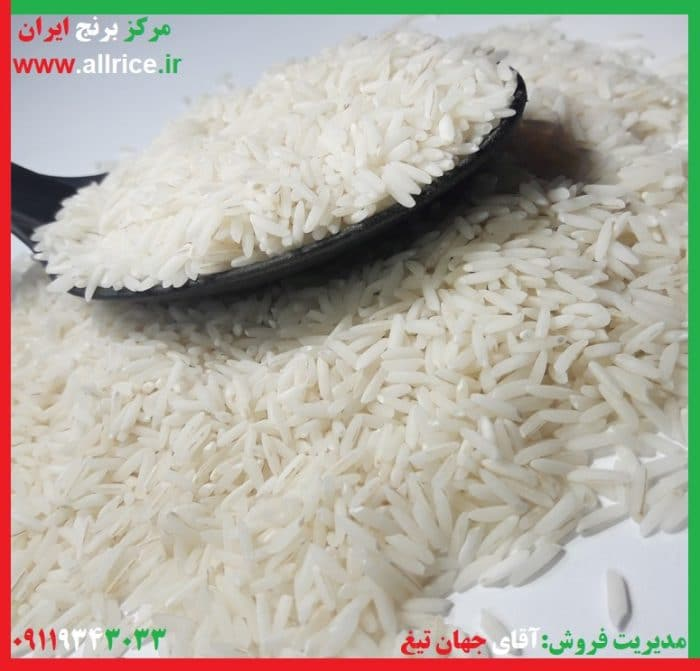 برنج فجر استخوانی