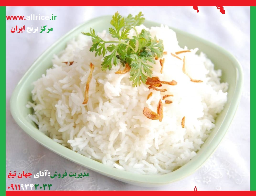 فروش برنج فجر