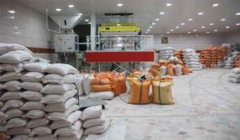 خرید عمده برنج ایرانی اعلا