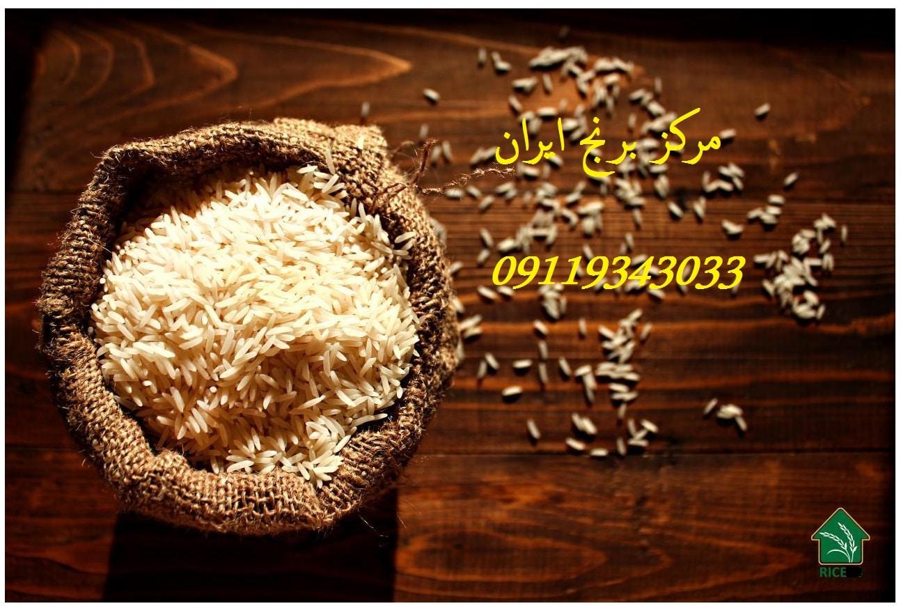 خرید عمده برنج فجر عطری