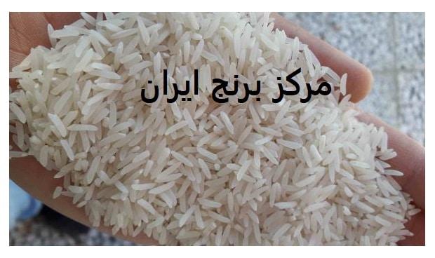 برنج صادراتی برنج فجر