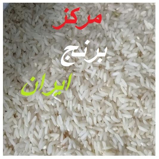 خرید عمده برنج طارم فجر