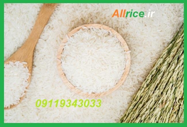 قیمت برنج فجر سوزنی گرگان درمشهد