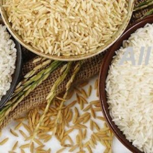 خرید عمده برنج طارم فجر گرگان با تخفیف 20% و ضمانت برگشت
