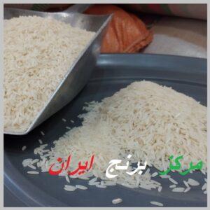 خرید عمده برنج دم سیاه