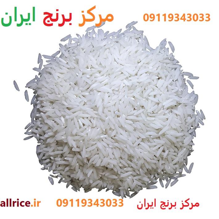 فروش عمده برنج هاشمی