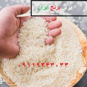 قیمت خرید عمده برنج هندی