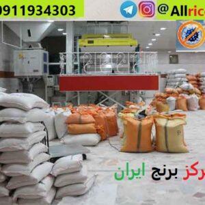 خرید برنج فجر عمده