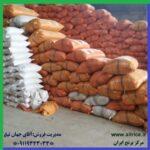 قیمت خرید عمده برنج دمسیاه