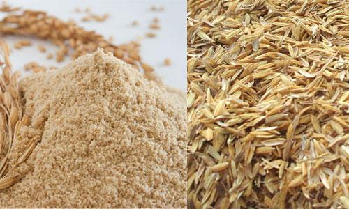 خرید شالی برنج